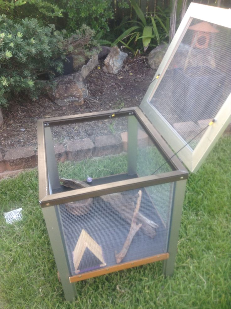 Home made DIY bearded dragon enclosure for out side
