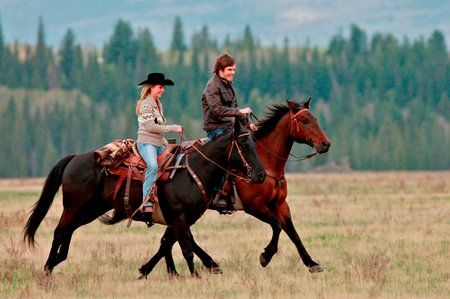 Heartland. great show also books