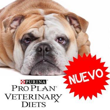 Nueva línea de alimentos medicados para perros de la marca Pro Plan Veterinary Diets. ¡De venta en Best for Pets!