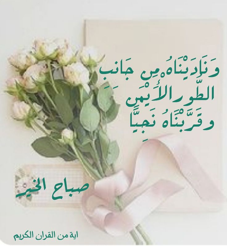 Pin By شذى الريحان On صباحات مشرقه Place Card Holders Place Cards Cards