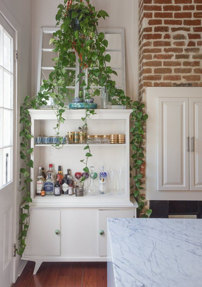 This plant-draped bar is housed in a mid-century hutch