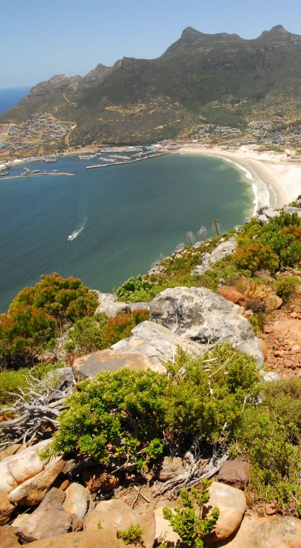 Table Mountain National Park 3