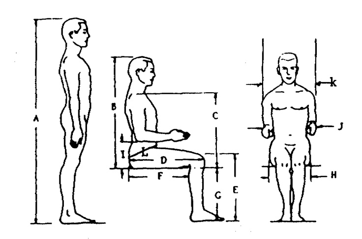 Anthropometric data elements