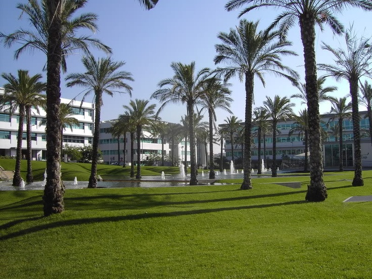 This was my favorite office ever ... Lagoas Park, Oeiras, Portugal