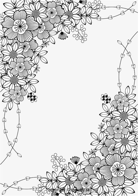 adult coloring page border free printable flowers floral