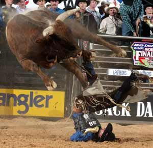 20 Best Images About Rodeo Wrecks On Pinterest Saddles