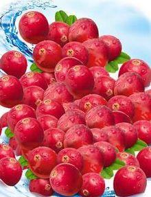 Что значит Клюква и Клюквенный сок для пациентов с хронической болезнью почек? http://www.kidney-cure.org/ckd-diet/270.html Клюква--это плод карликовых кустарников в северном полушариях и ее сок считается самым здоровым соком.Ну,можно ли пить клюквенный сок пациентам с нефропатием и болезнью почек? Что значит Клюква и Клюквенный сок для пациентов с хронической болезнью почек?