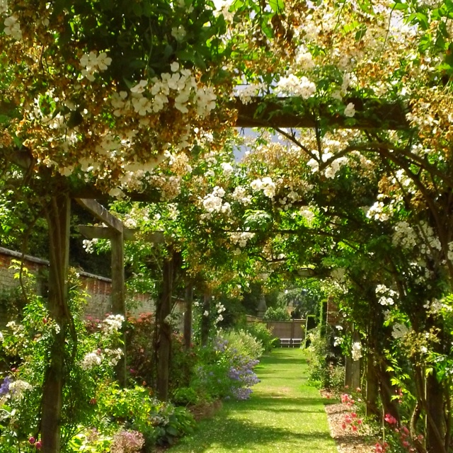 The rose garden at Castle Howard in Yorkshire, England