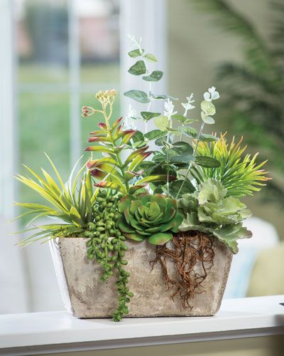 Order Realistic Artificial Succulent Plants for Home and Office Decor at Petals
