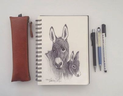 "Check out new work on my @Behance portfolio: ""Little sweet donkey""…"