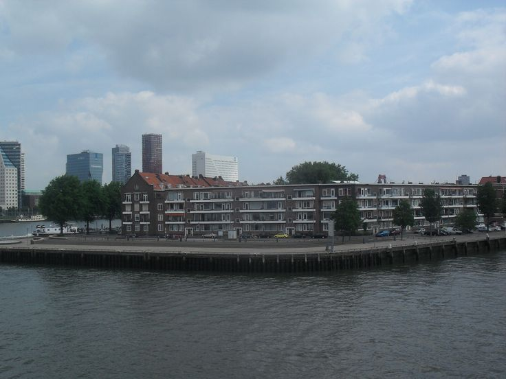 The view on the river in Rotterdam