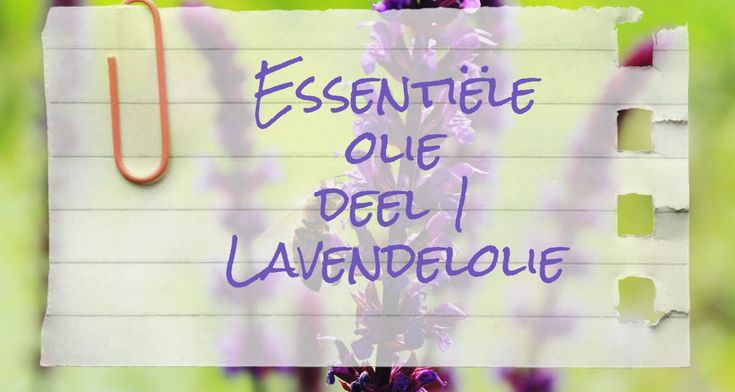 Serie: essentiële olië, deel 1 – Lavendelolie