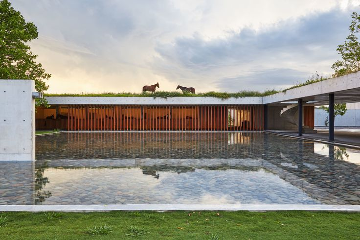 Polo Champion Nacho Figueras Builds a Dream House for His Prizewinning Photos | Architectural Digest