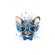 pies w okularach.jpg
