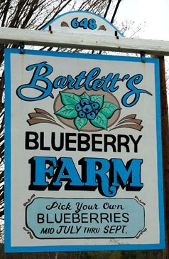 I like this blueberry farm sign - need to re-do the one for Hall's Berry Farm and trying to get ideas...