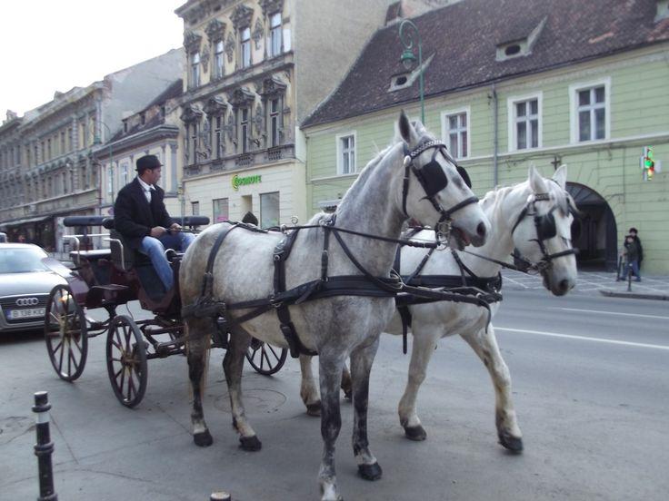 Birjarii şi căruţaşii din Schei Braşovului