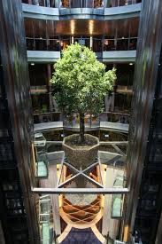atrium restaurant - Google Search