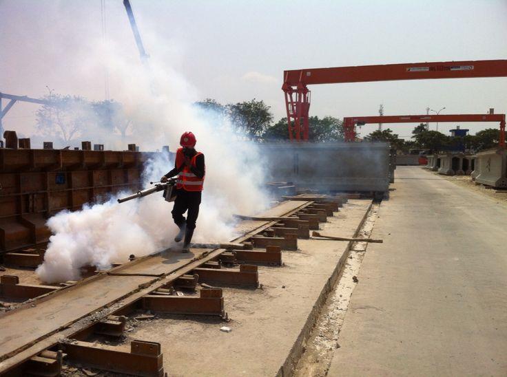 Fogging Nyamuk Untuk Industri Di Cikarang