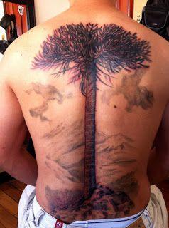 Araucaria -13agujas Tatuajes y Gabinete de Arte