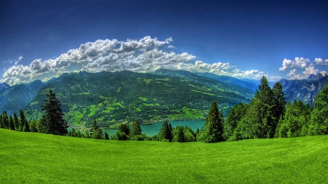Green Hill Green Nature Hd Wallpapers Live Wallpaper For Pc Hd Wallpapers For Pc Nature Wallpaper