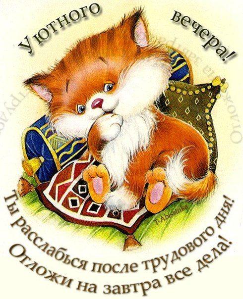 Кошки, картинки с надписями добрый вечер прикольные
