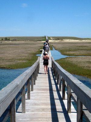 Sandwich Boardwalk, Cape Cod. Information for visitors to Sandwich, Cape Cod.