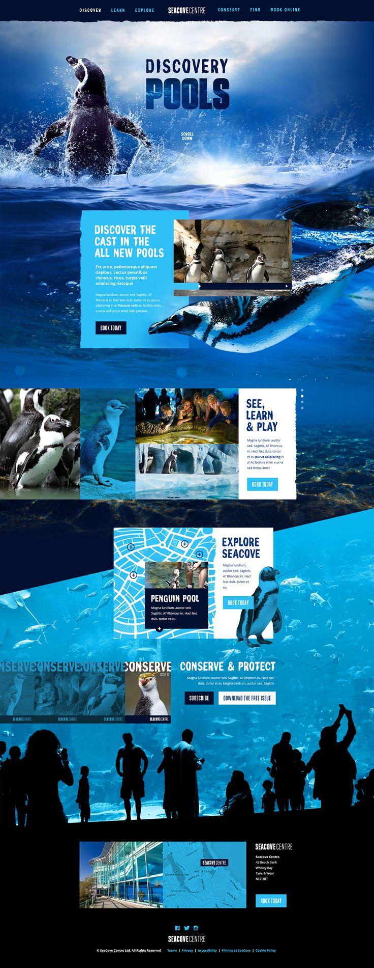 net magazine Design Challenge