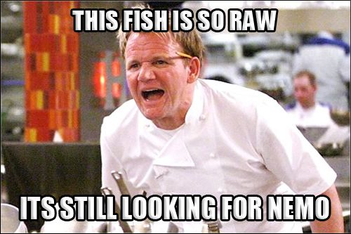 gordon ramsay meme | Best of Gordon Ramsay - Angry Chef Meme | Comics and Memes