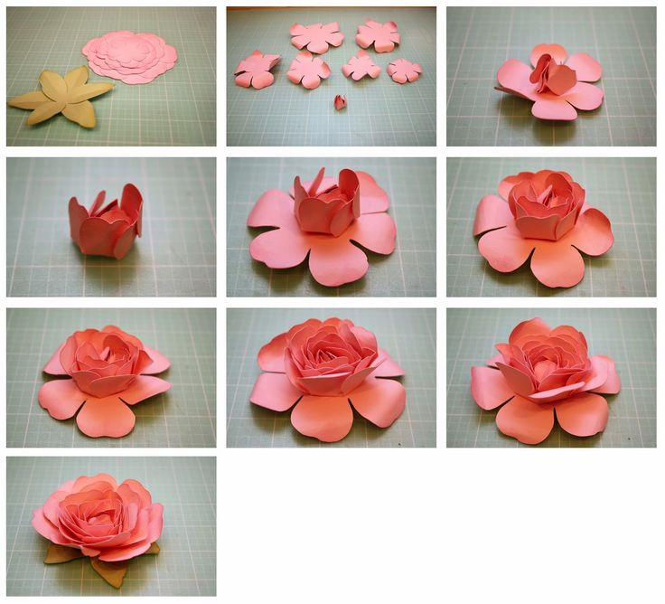 bits of paper  rolled rose and easy to assemble rose 3d