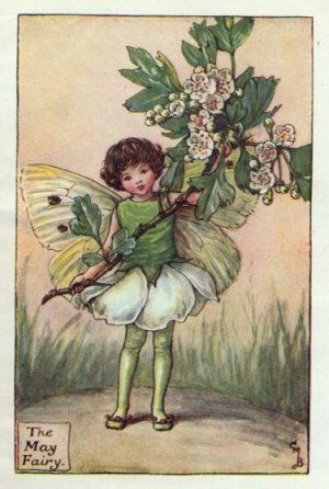 May Flower Fairy Print c.1927 Fairies by Cicely Mary Barker
