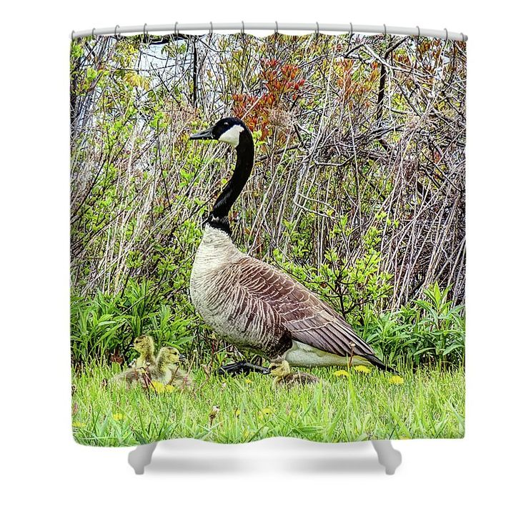 Motherly Shower Curtain by Leslie Montgomery.