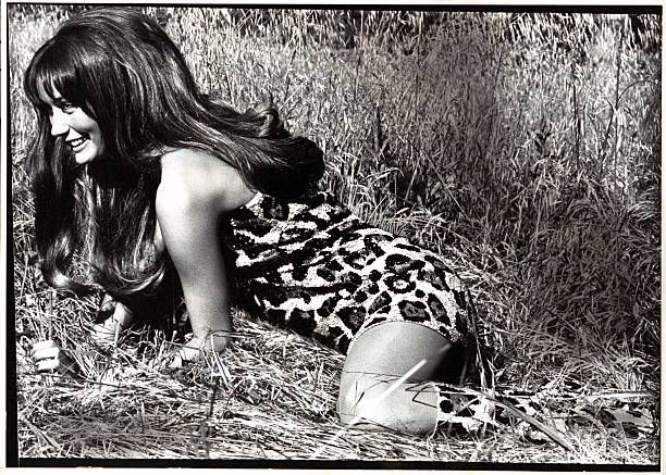 Mme Philippe Leroy crawling in the grass and wearing ultrashort leopardprint sequined onepiece bodysuit and matching boots by Laura Aponte coiffure...
