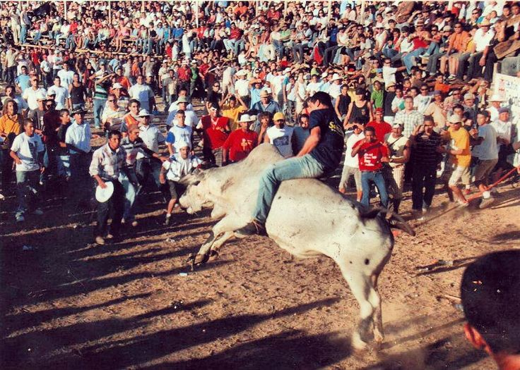 Monta de toros , fiestas cívicas Guanacaste Costa Rica