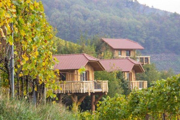 Schwarzwalder Waldhuttenzauber Baumhaushotel Oberkirch Ortenau Baden Baumhaushotel Hutte Im Wald Haus