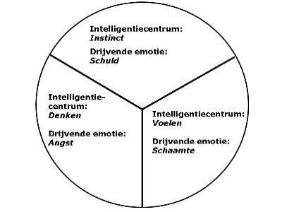 Boek Emotionele Intelligentie Hoofdstuk 2