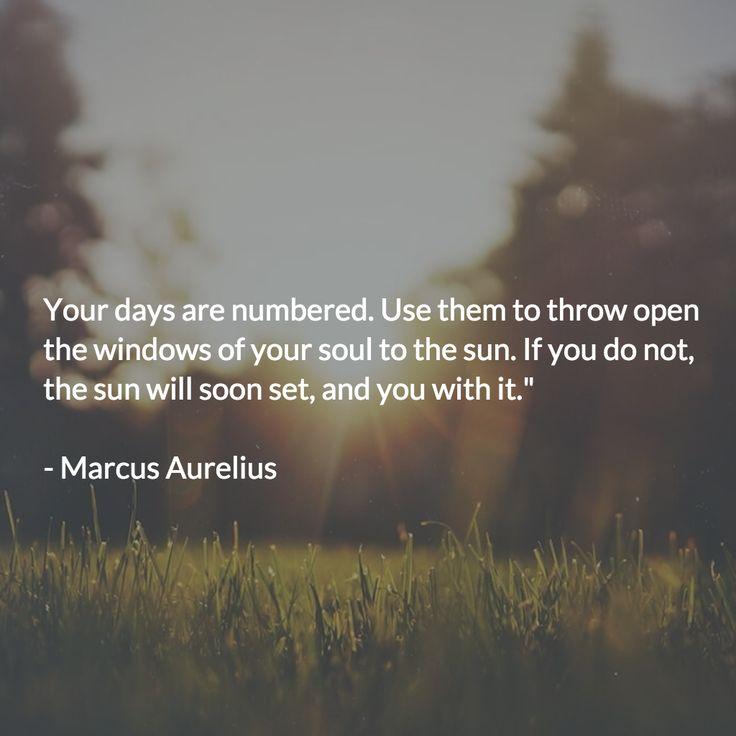 """""""Wise Decisions""""  - Marcus Aurelius"""