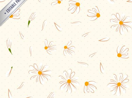 White daisies seamless background vector