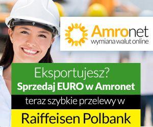 Amronet.pl I. Amronet.pl również dla firm, eksporterów i importerów towarów. Zapraszamy wszystkich przedsiębiorców.  Nawiązanie współpracy z zagranicznymi kontrahentami stanowi dla wielu firm moment przełomowy, gdyż rozszerzając w ten sposób rynek zbytu swych produktów bądź usług pojawia się szansa diametralnego zwiększenia zysków. www.amronet.pl