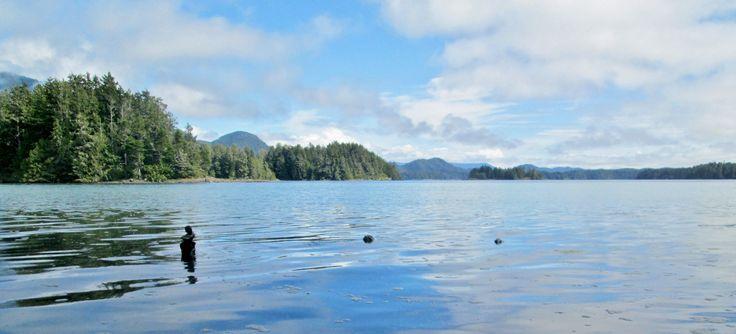 20170820 - Clayoquat Sound, BC (Tofino Botanical Gardens)
