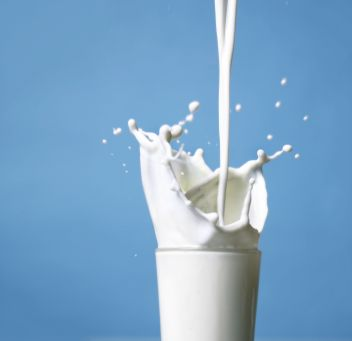 South Carolina State Beverage- Milk