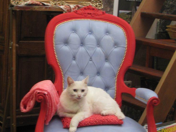 Een oude stoel met leren bekleding omgetoverd tot 'prinsessenstoel' met Emperor's Silk en Louis Blue Chalk Paint van Annie Sloan