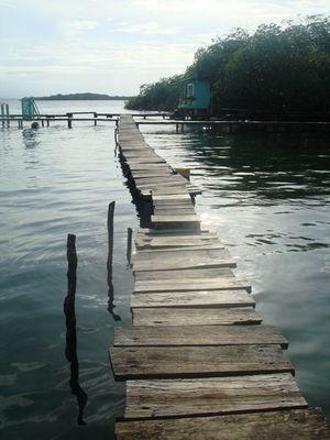 Photos of Panama's Bocas del Toro archipelago, from Bastimentos to Bocas Town.: Isla Bastimentos