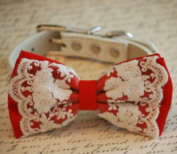 Bow Tie Red Dog dentelle, mariage de cru, accessoire de mariage Animaux, Vintage idée de mariage, accessoire de mariage rouge,