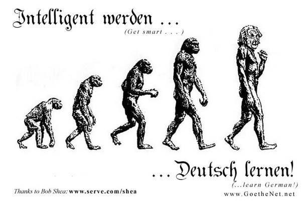 Intelligent werden...