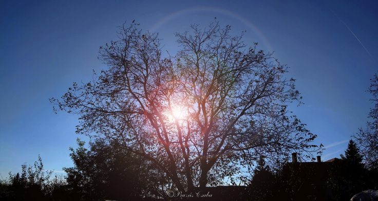 Sunshine *_*  www.facebook.com/csibufoto
