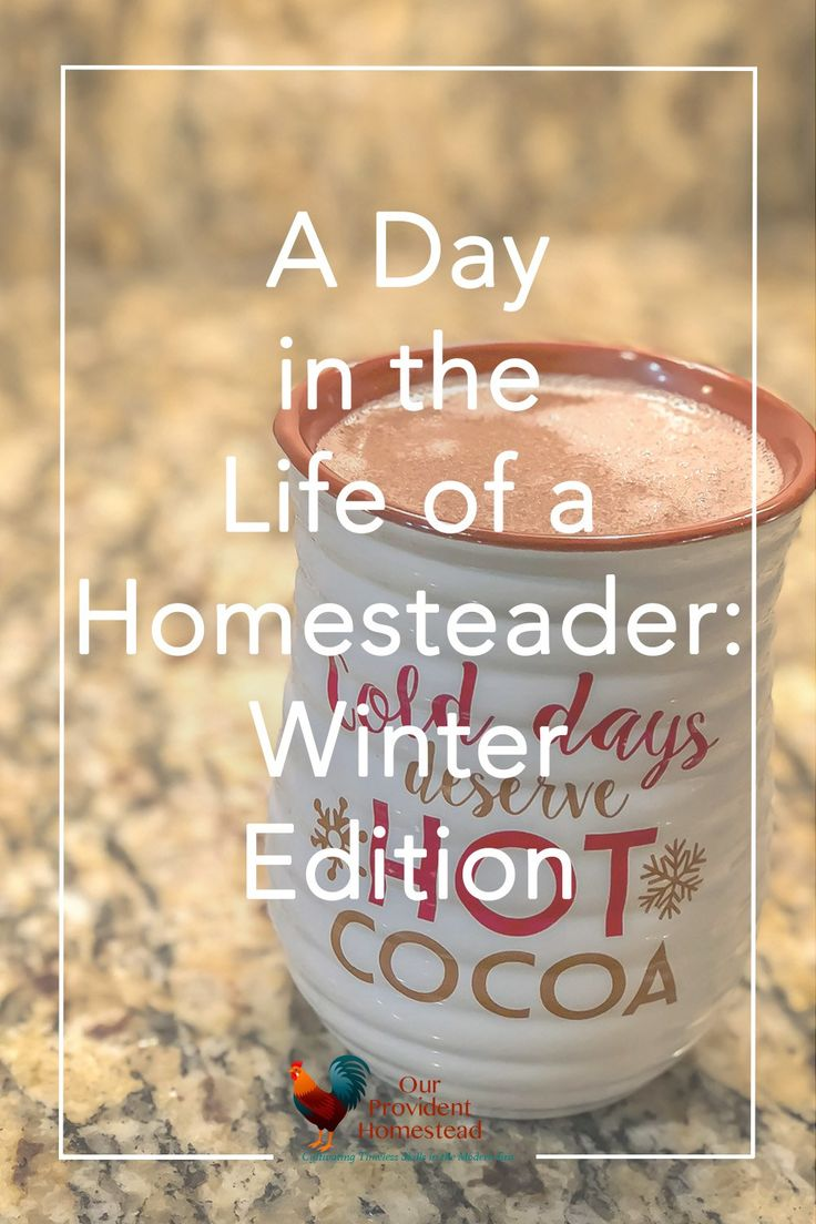 What is winter like on the homestead? Click here to see a day in the life of this homestead in the winter time. Lots of errands and stuff to do even when it is cold outside. #homesteader #winter #homesteading via @ourprovidenthom