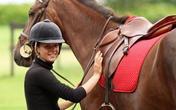 English Horseback Riding with Hunter;  im gonna do this! -hgw