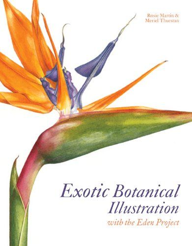 Exotic Botanical Illustration: With the Eden Project by Rosie Martin http://www.amazon.com/dp/1849940312/ref=cm_sw_r_pi_dp_W0BQtb0F9C38785P
