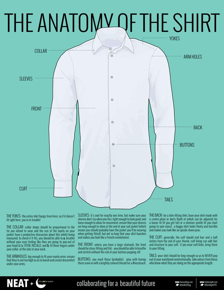 The anatomy of a shirt. Detailed Shirt Infographic ...