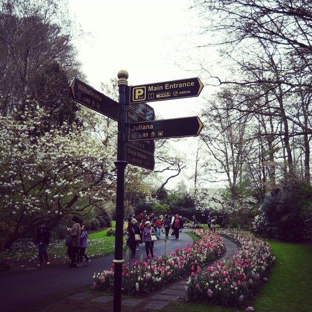 Kaukenhof Gardens #kaukenhof #gardens